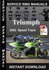 Thumbnail 2002 Triumph Speed Triple Service Repair Manual Download