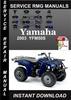 Thumbnail 2003 Yamaha YFM50S Service Repair Manual Download
