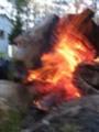 Thumbnail Fire