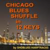 Thumbnail Chicago Blues Shuffle in 12 Keys