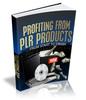Thumbnail PLR Products Profit, PLR Rights