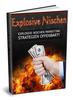 Thumbnail Explosive Nischen PLR Lizenz