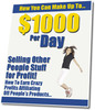 Thumbnail Make A $1,000 Per Day - MRR