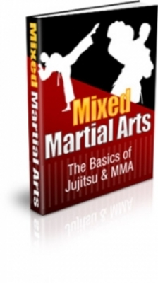 Pay for Mixed Martial Arts Secrets For Winner