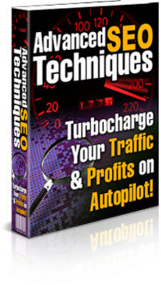 Pay for Advanced SEO Techniques-TurboCharge Your Traffic & Profits