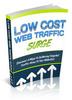 Thumbnail Low Cost Web Traffic PLR Ebook
