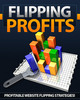 Thumbnail Flipping Profits Comes with Giveaway Rights