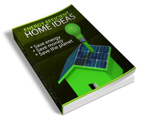 Pay for Energy Efficient Home Ideas (PLR)