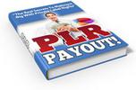 Thumbnail PLR Payout