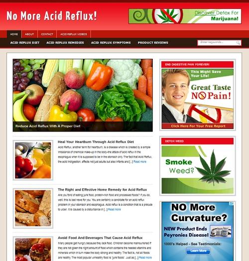 Acid Reflux Niche Blog - Download Templates / Flash