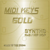 Thumbnail MIDI Keys Gold: Synths RnB/Hip Hop