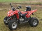 Thumbnail Aeon Cobra 220 ATV Service Repair Workshop Manual DOWNLOAD