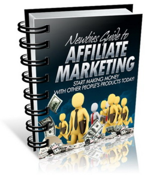 Pay for Newbies Guide To Affiliate Marketing