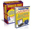 Thumbnail Squeeze Page Profits with PLR Rights