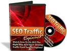 Thumbnail SEO Traffic Explained - Video Series mit PLR!