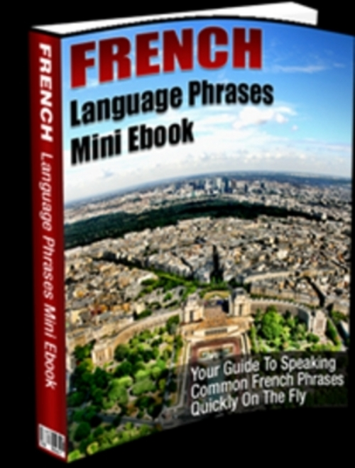 Pay for French Language Phrases Mini E book