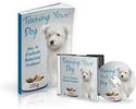 Thumbnail Training Your Dog - MP3 & PDF
