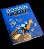 Thumbnail Domain Flipping Treasure Map