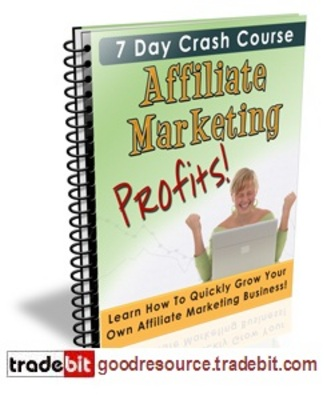 Pay for *New* Affiliate Marketing Profits 7 days Crash Course