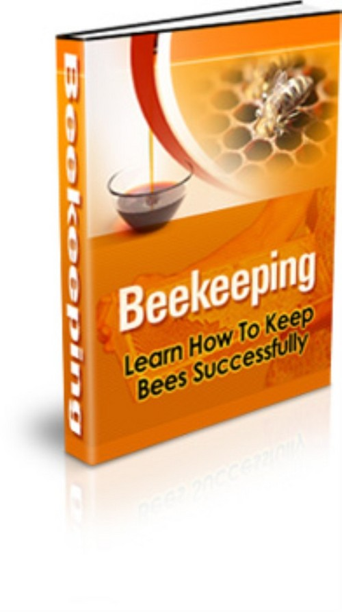 Learn How to Keep Bees Successfully - Keeping Bees