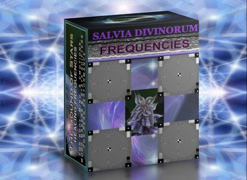 Pay for z-SALVIA   COSMIC PARTICLE.mp3