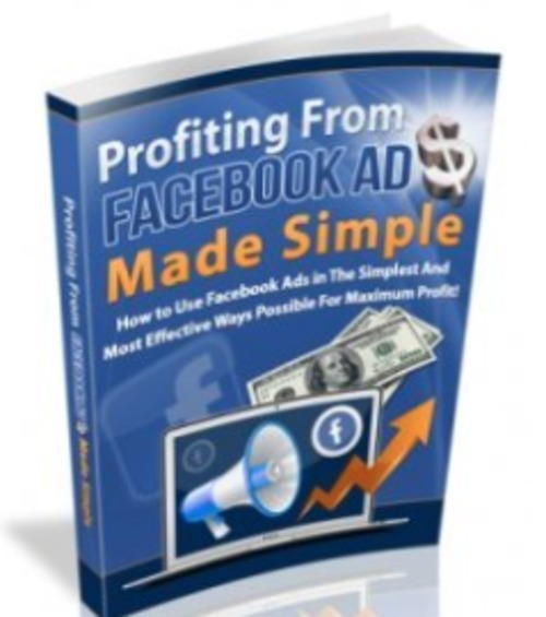 Pay for Profiting from Facebook Ads