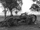 Thumbnail wagon