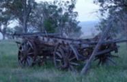 Thumbnail wool wagon cart horse drawn bullock