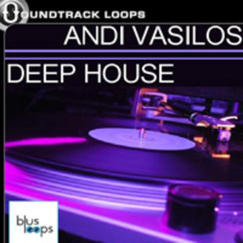 Andi vasilos deep house loops acid wav download loops for Deep acid house