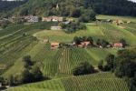 Thumbnail Vineyards surrounding St. Anna am Aigen, Styria, Austria, Europe
