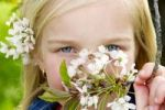 Thumbnail Portrait of young blond girl, blossoms in her hair and in her hand