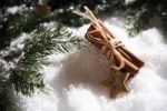 Thumbnail Cinnamon sticks with branches of fir and decorations on snow