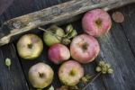 Thumbnail Plucked apples with dried up twigs on a wooden board at apple harvest in autumn