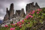 Thumbnail Cinque Torri, Dolomites, Alps, Italy, Europe