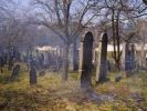 Thumbnail Jewish cemetery in Straznice, Hodonin district, South Moravia, Czech Republic, Europe