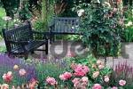 Thumbnail Benches in Rose Garden, Westfalenpark Dortmund, North-Rhine Westphalia, Germany