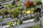 Thumbnail Green concrete balconies Olympiadorf Olympia high-rise flats village Munich