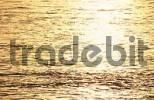 Thumbnail Baltic Sea at sunset, Germany