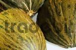 Thumbnail Sugar Melon Cucumis melo