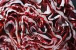 Thumbnail Radicchio Cichorium intybus var. foliosum hegi
