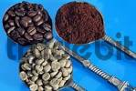 Thumbnail Coffee beans, roasted, unroasted and milled coffee on spoons Coffea arabica
