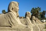 Thumbnail Row of sphinxes in front of the temple site of Karnak in Luxor, Egypt, Africa