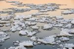 Thumbnail Ice adrift on the river Elbe near Hamburg, Germany, Europe