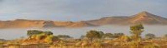 Thumbnail Sunrise over morning mist in the Namib Desert near Sossusvlei, Namibia, Africa