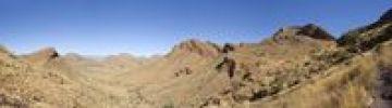Thumbnail Olive-Trail, Namib-Naukluft National Park, Republic of Namibia, Africa