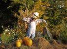 Thumbnail Autumnal scarecrow, USA