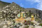 Thumbnail Rocks colourful painted with Buddhas above Drepung Monastery Lhasa Tibet China
