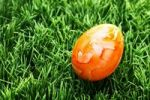 Thumbnail Easter egg on a lawn