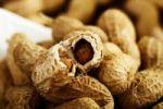 Thumbnail Halved peanut