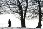 Thumbnail Silhouette of two people walking past winter trees